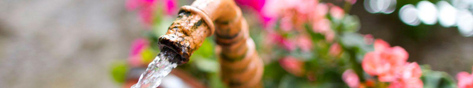 Dorfbrunnen_Wasser