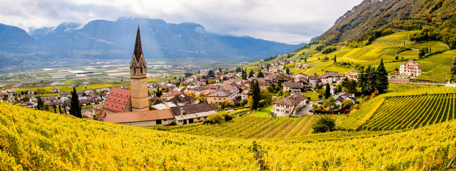 Autunno a Termeno - Alto Adige- Foto: Antie Braito
