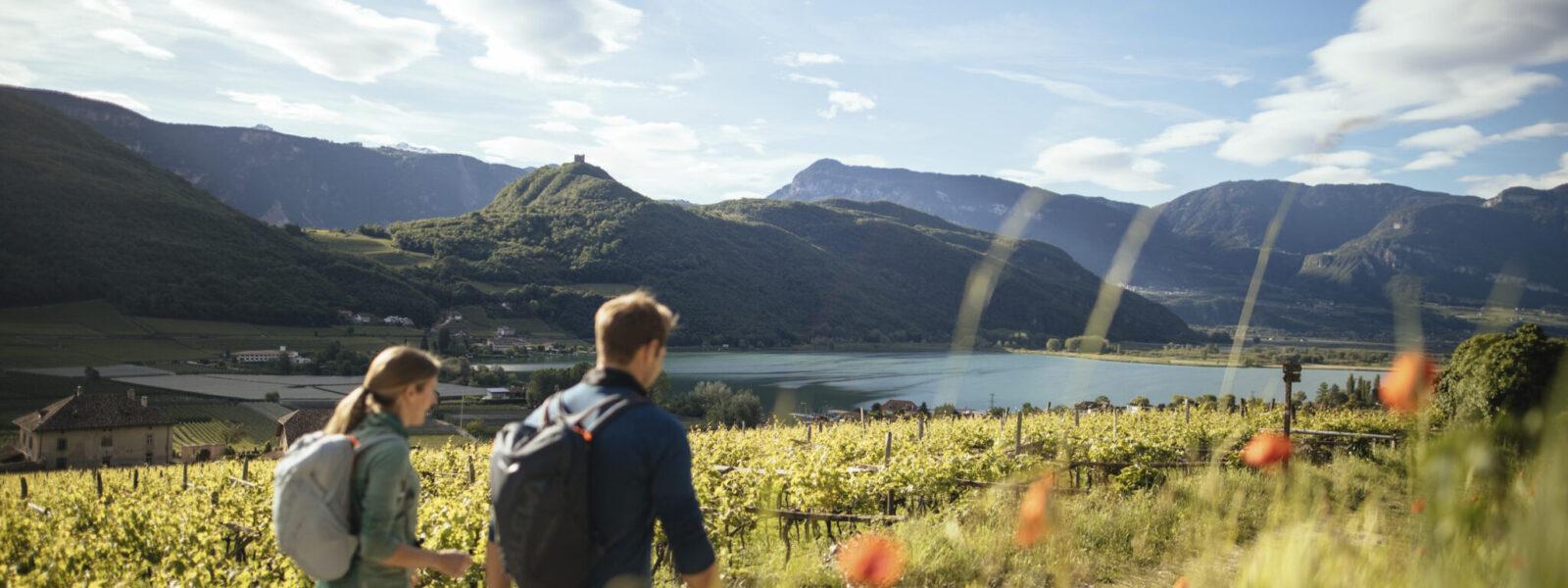 Wandern Kalterer See